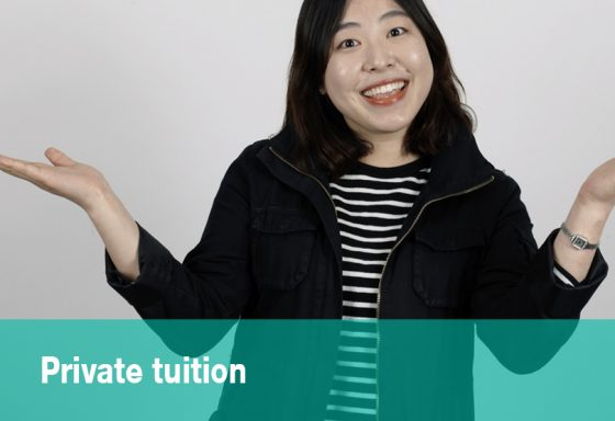 general french courses Private tuition