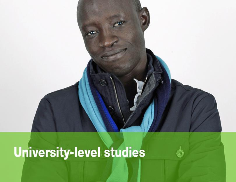 University-level studies