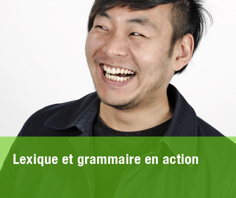 Lexique et grammaire en action
